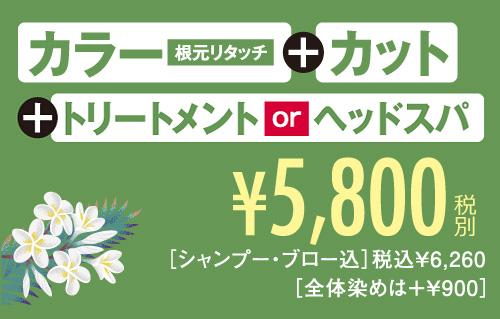 カラー+カット5800円