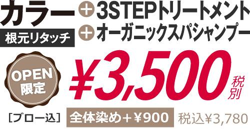 カラー+3STEPトリートメント+オーガニックスパシャンプー3500円