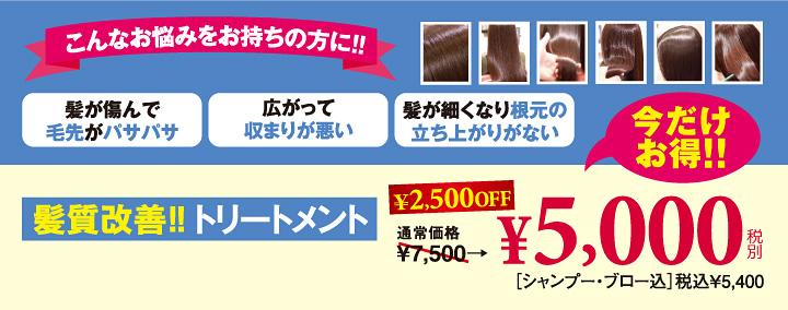 髪質改善!トリートメント